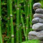 Ładny ,a także miły dla oczu ogród to zasługa wielu godzin spędzonych  w jego zaciszu w trakcie pielegnacji.